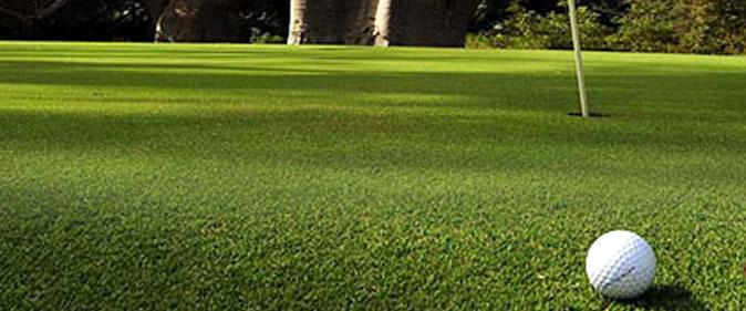 Golf : le F�d�ration organise un camp d'initiation du 15 ao�t au 30 septembre 2015