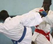 Jeux Africains - Matar Ba : �La d�l�gation s�n�galaise va compter 282 membres �