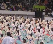 Point de presse des organisateurs de la �Nuit des arts martiaux�, mardi