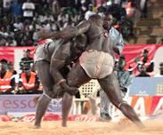 Boxe � Mamadou Diallo, ancien directeur technique : �Tyson avait les jambes en coton�