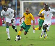 Challenge Mandela le 08 Septembre: L'Afrique du Sud invite les lions