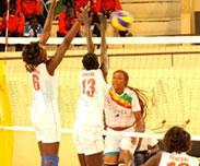 Volley-ball s�n�galais : Une discipline qui souffre de manque de moyens et de visibilit�